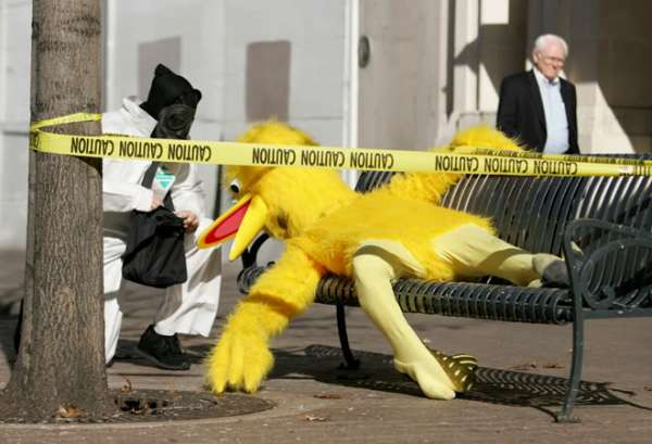 Big Bird After 6th Street