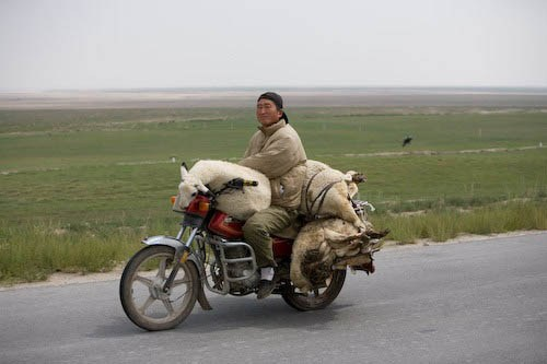 overloaded-motorcycle-22