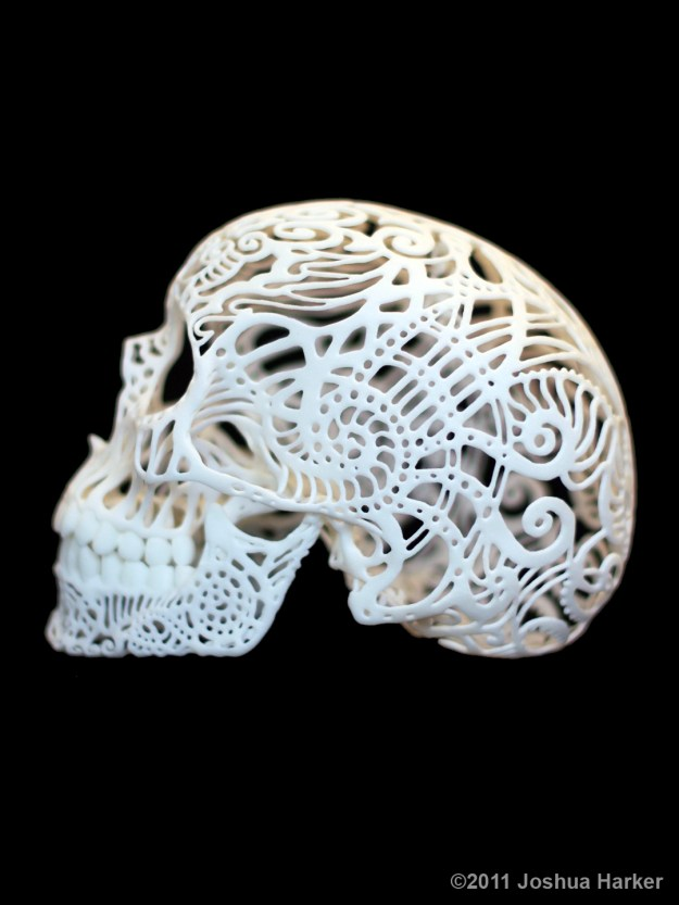 Crania Anatomica Filigre 3d printed skull: side