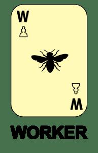 Worker Card