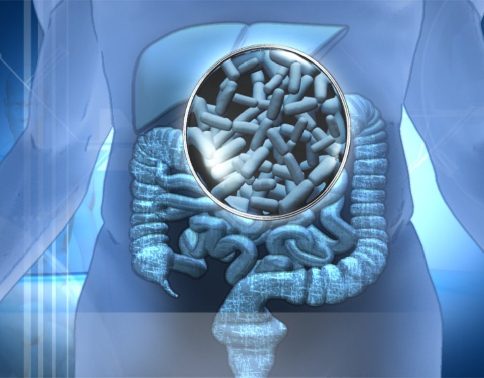 Alimentos-probioticos-organismo