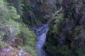 Hoh River from bridge