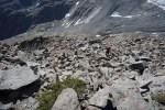 Boulderfield below summit