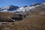 Upper Johnson Creek