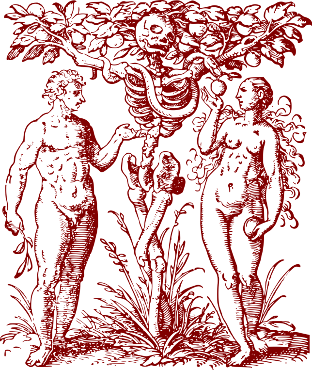 adam-and-eve-1649339_1280