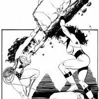 Wonder Woman vs She Hulk