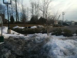 biorretencion-nieve