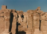 Dr. Gross in Egypt