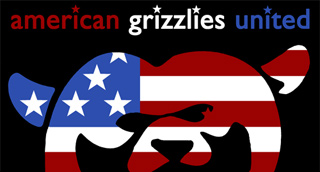 American Grizzlies