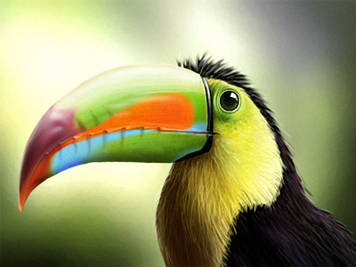 tucano final 25 Breathtaking Digital Paintings from Dribbble