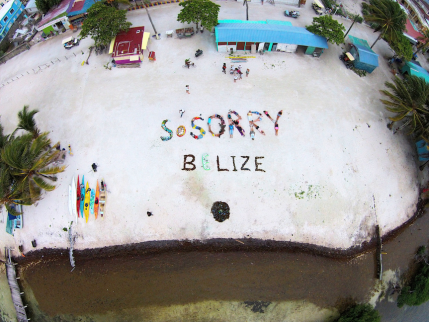 SoSorry Belize, 2015
