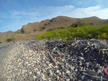 Plastic Pollution Expedition to Indonesia!!~