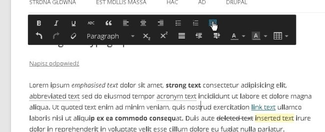 wp front editor 06