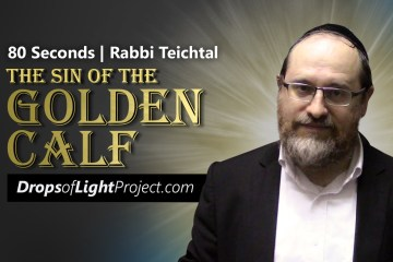 The Sin of The Golden Calf (80 Sec)