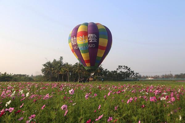 meinong-flower04