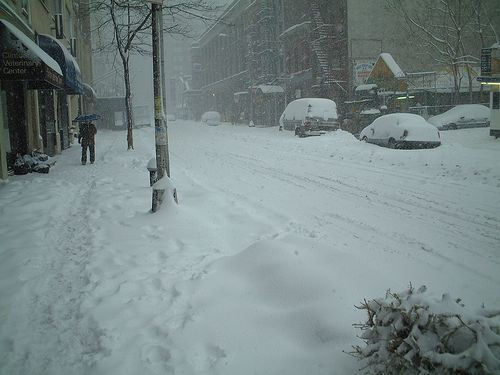 Snowing in the city