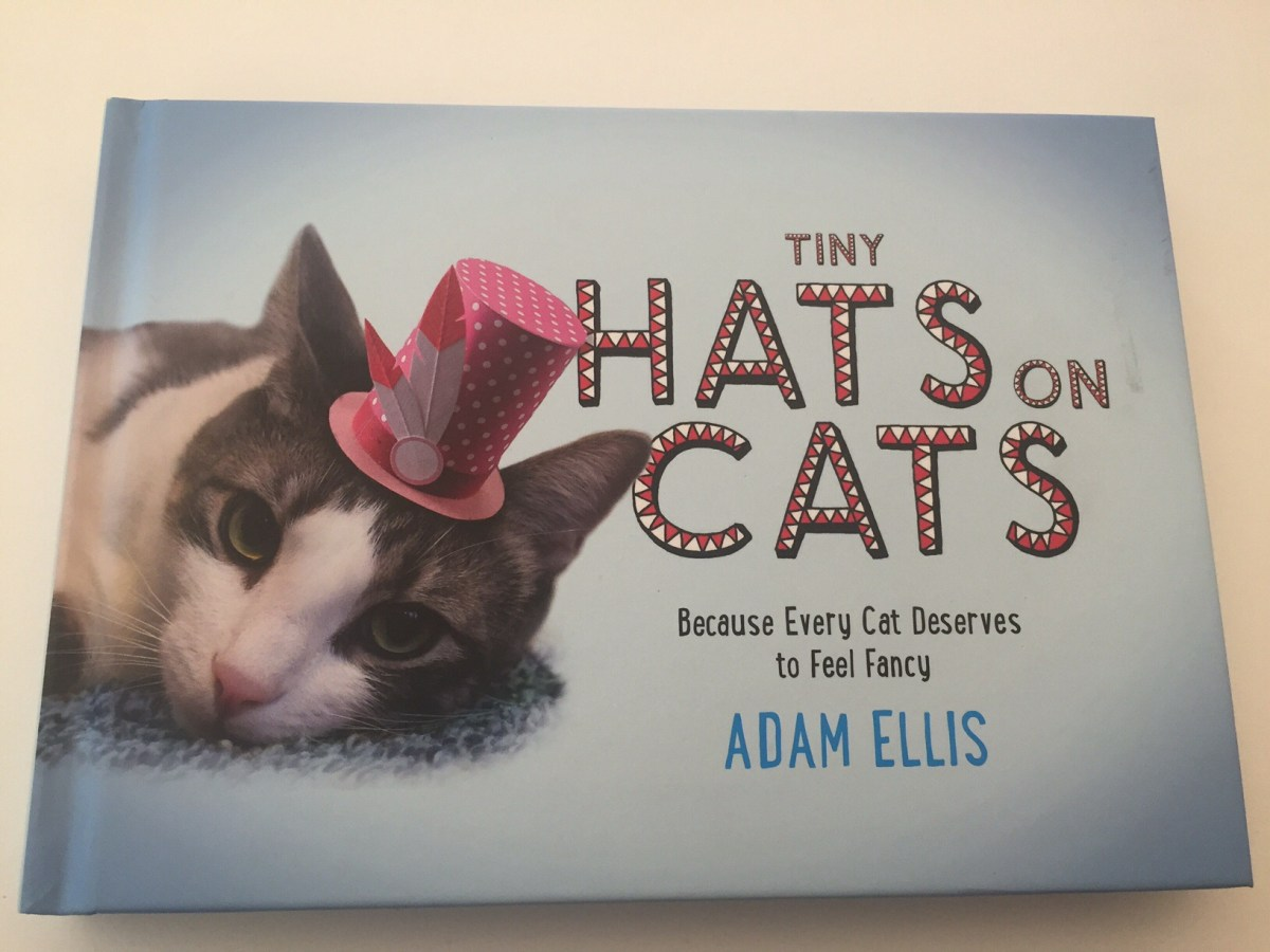 Tiny Hats on Cats - Quirky & Joyful. Buy it meow!