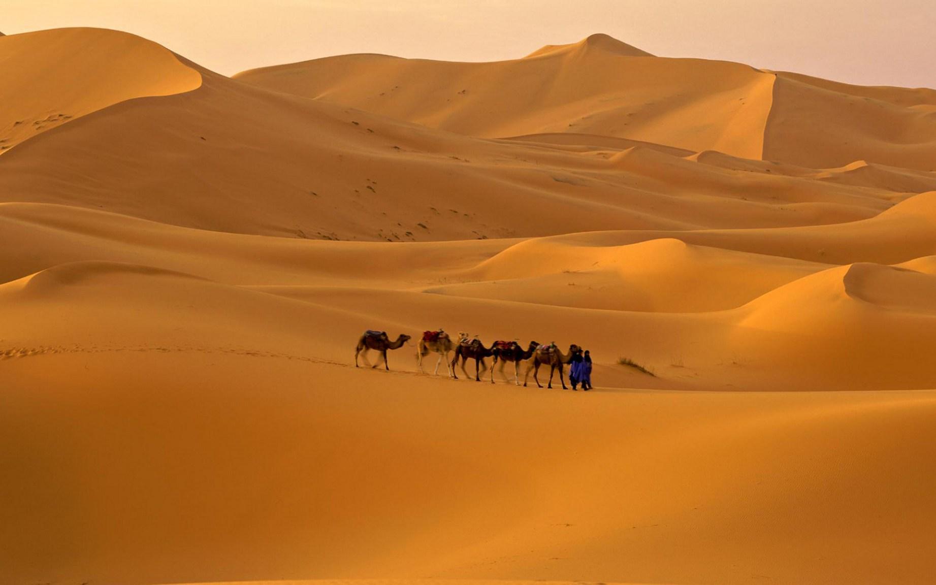 Jaisalmer-Desert-Dunes