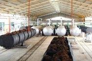 PTPN III Bangun Pabrik Minyak Goreng Rp 510 Miliar