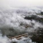 Resolusi Sawit Parlemen Eropa Rusak Iklim Usaha di Indonesia