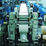 Industri pulp Indonesia menduduki peringkat 9 dunia dan industri kertas berada di peringkat 6 dunia.