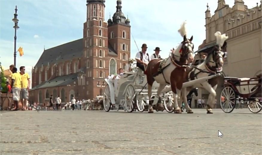 Dorożki i konie na rynku w Krakowie
