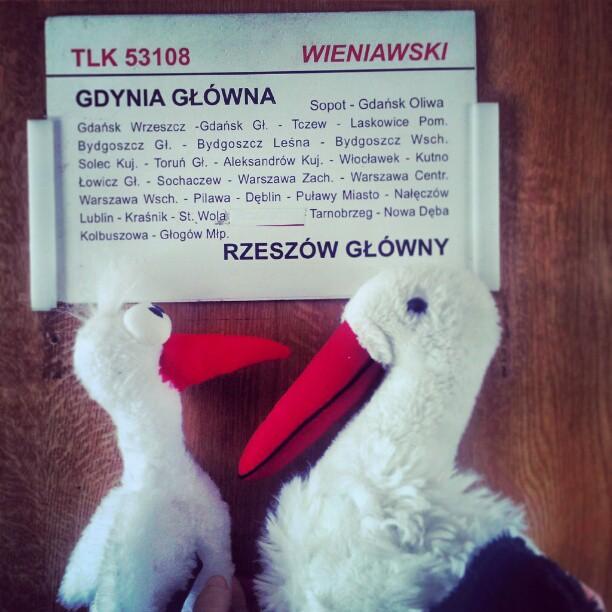 bociany-w-pociagu-pkp-polska-gdynia-rzeszow