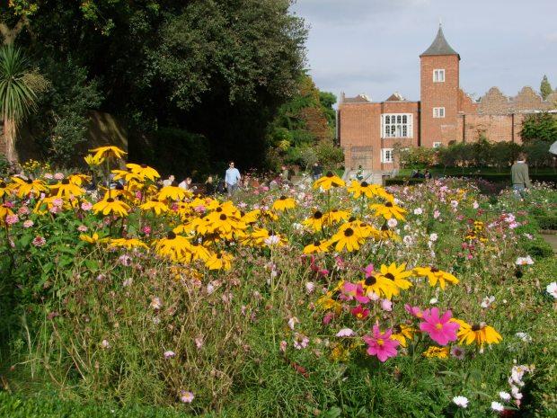 holland-park-londyn-jesienny-spacer-w-londynskim-parku-kensington