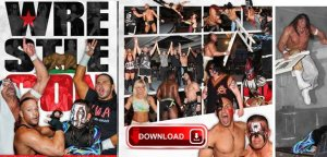 slide_wrestlecon2015