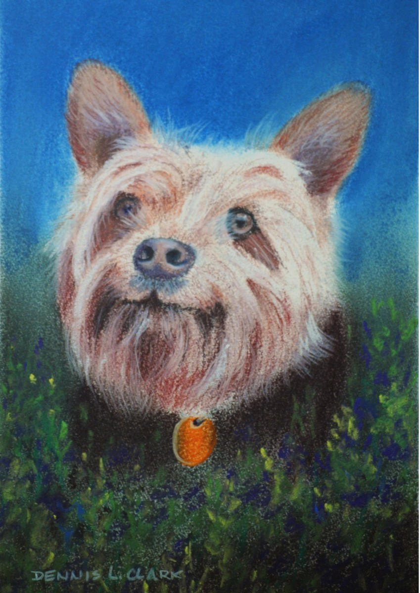 Beautiful Pastel Online Art Lessons Long Hair Dog Grooming Tools Long Hair Dog Breed Large How To Draw A Dog bark post Long Hair Dog
