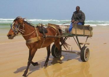 Dakar, Senegal, Afryka Zachodnia