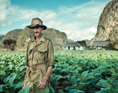 photography-cuba-tobacco-fields-09
