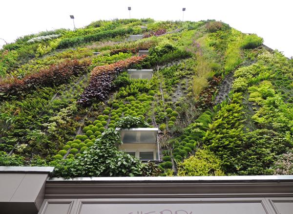 vertical-garden-by-patrick-blanc-at-paris-design-week-01
