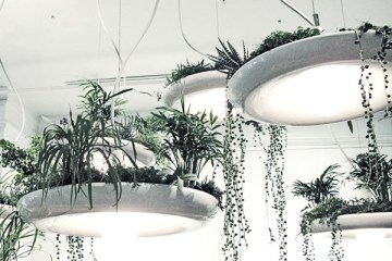 babylon-suspended-garden-light