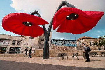 Inflating flowers warde by HQ Architects in Jerusalem - 01