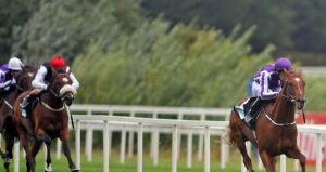Free Eagle (left): Connections looking to Leopardstown for next race