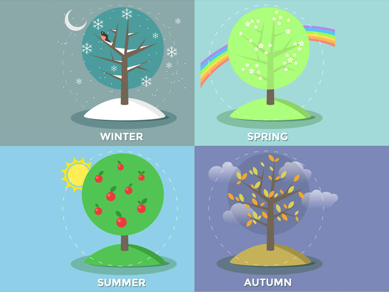 Four seasons – vector illustration