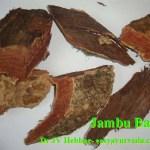 Jamun Bark