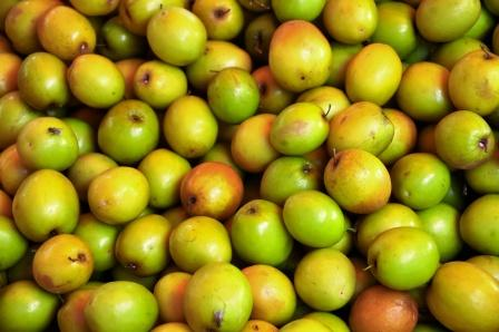 Ber Fruit: Indian Jujube Uses, Dose, Side Effect, Research