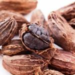 Black Cardamom: Uses, Dose, Side Effects, Research, Remedies