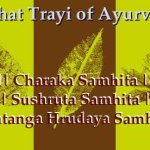 Brihat Trayi: The 3 Treatises That Form The Foundation of Ayurveda