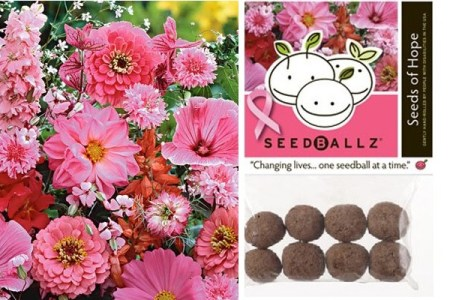 Seedballz Seeds Of Hope Seed Collection