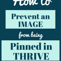 How to prevent an image from being pinned in Thrive