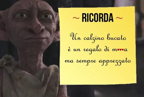 Calzino