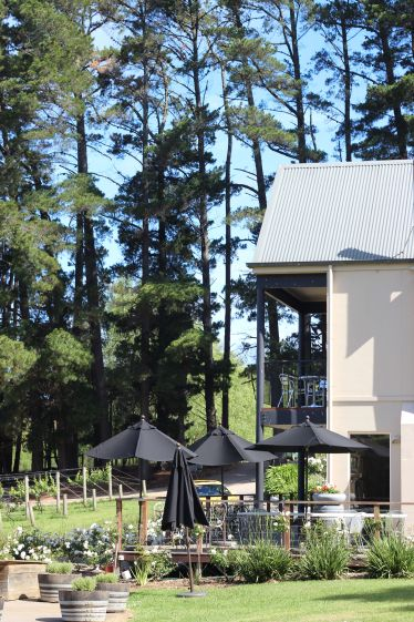Horseback-winery-tour-mornington-peninsula-12