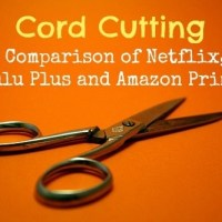 Cord Cutting: A Comparison Of Netflix, Hulu Plus and Amazon Prime