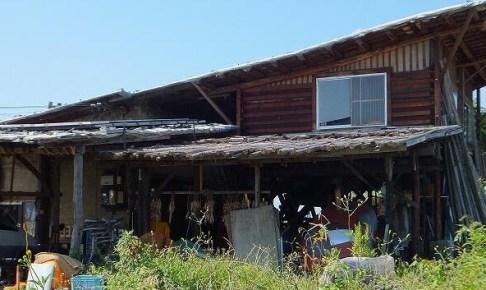 廃材天国の外観。この家、廃材だけでできているんです。子どもたちがのびのびと逞しく育っていました。ぼくの人生の目標のひとつ。
