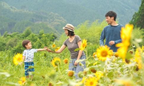 熊野川町は見事なまでの四季折々の風景が楽しめます。子育てには最高の環境。