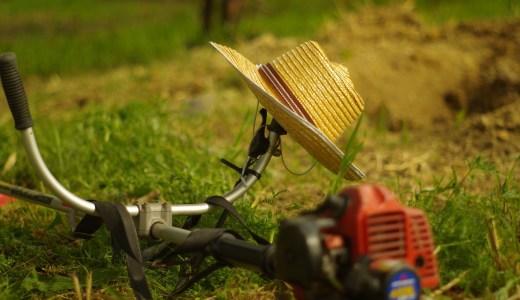 「田舎の生活コストは安い」は嘘。諸々の支払い苦しいよ〜