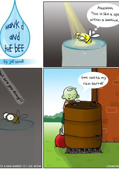 Hank D and the Bee: The joys of a rain barrel